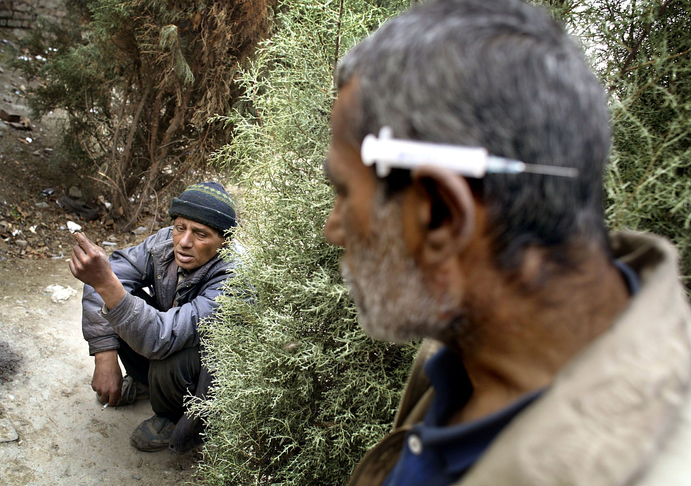 One in Three Iranians Treated for Drug Addiction, Expert