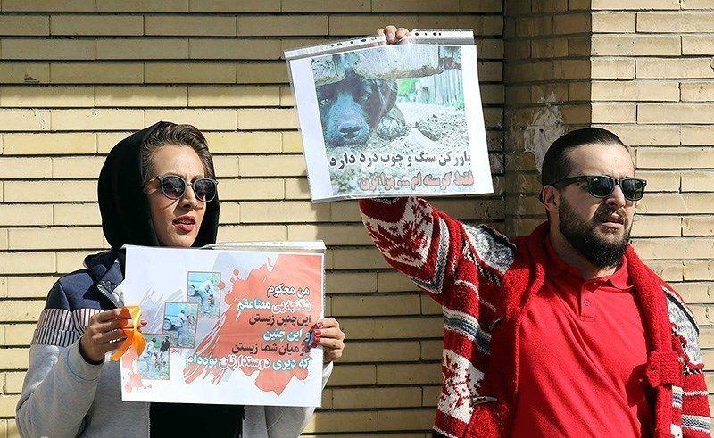 Protest_against_animal_abuse_in_Mashhad_2